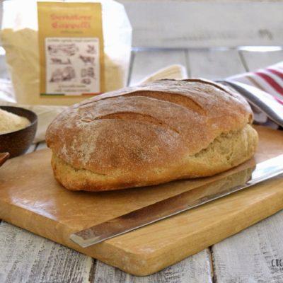 Pane di grano antico Senatore Cappelli