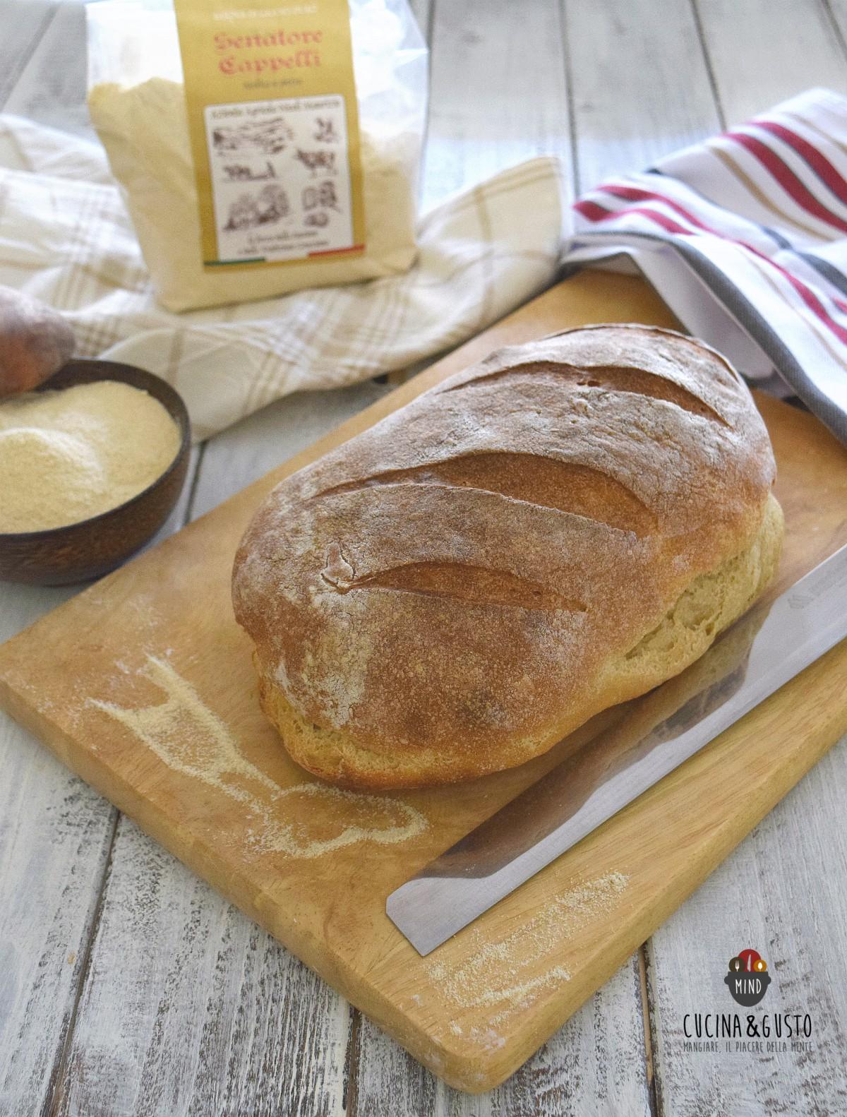 Pane di grano antico Senatore Cappell