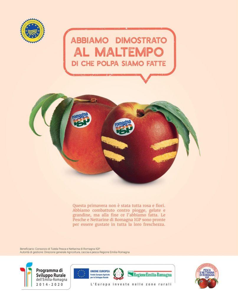 Le pesche e Nettarine di Romagna IGP non si arrendono, al via la campagna di comunicazione